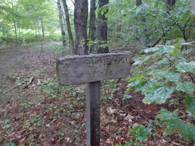 Paul Maleski Trail Marker