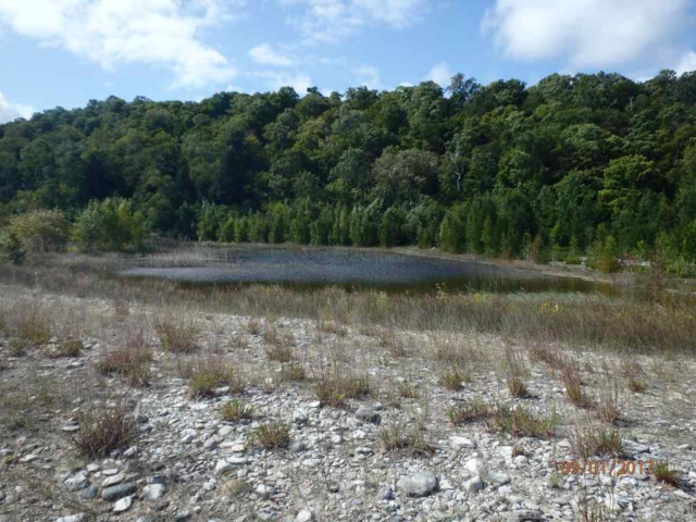 Pond near John Maleski place on North Manitou Island