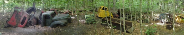 Stormer Camp Logging Trucks Panoramic View