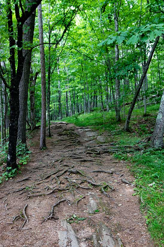 piers gorge hiking trail